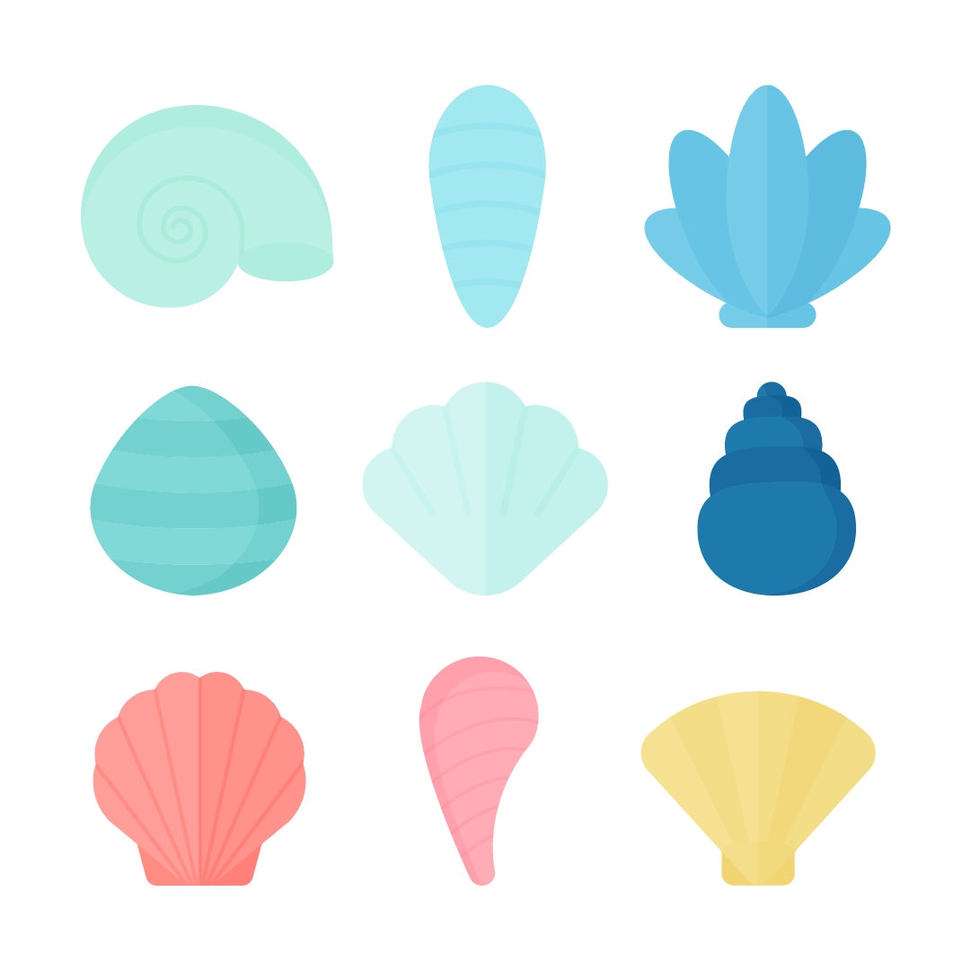 Vector illustration of various seashells in summer colours in flat design style