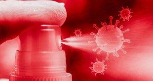 coronavirus g1b26502e7 640
