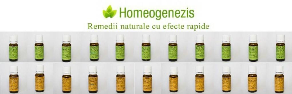 cover homeogenezis-01