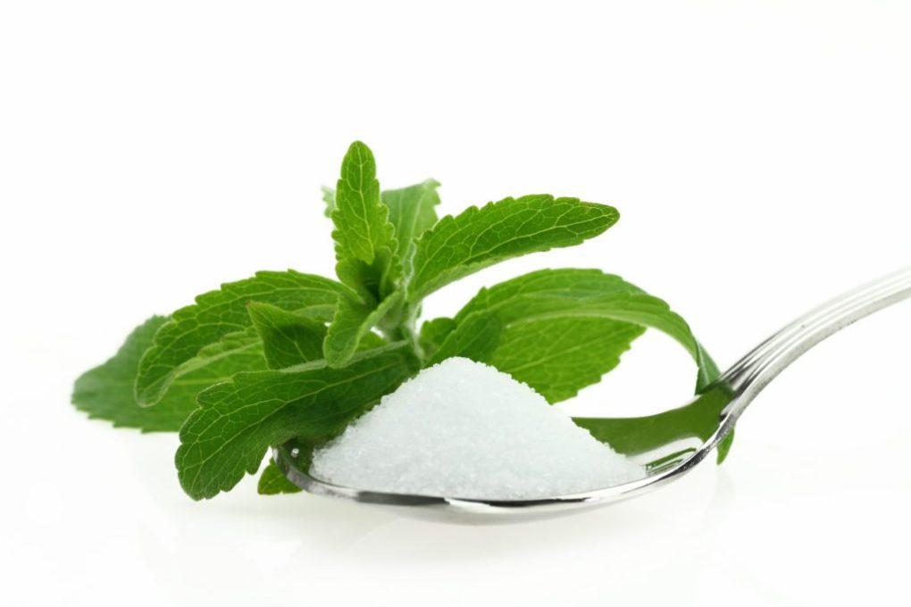 stevia, inlcuitor de zahar