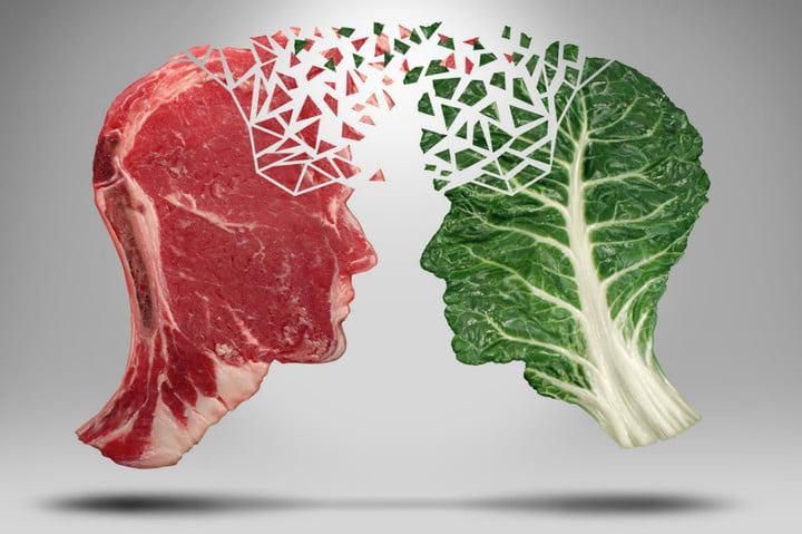 alternative de proteine la carne