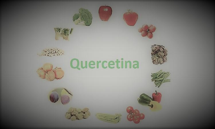 quercitina anti coronavirus