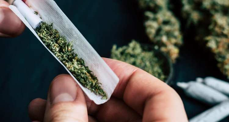 MEDICAL MARIJUANA – THE DIFFERENT TREATMENT USES OF IT