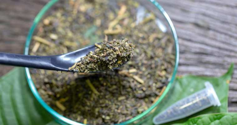 IS KRATOM RIGHT FOR BODY BUILDERS: EVERYTHING YOU NEED TO KNOW!!