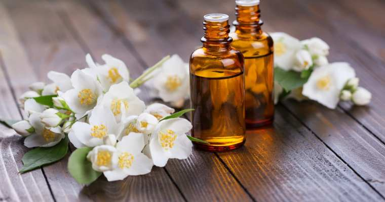 Health Benefits of Jasmine Oil To Read