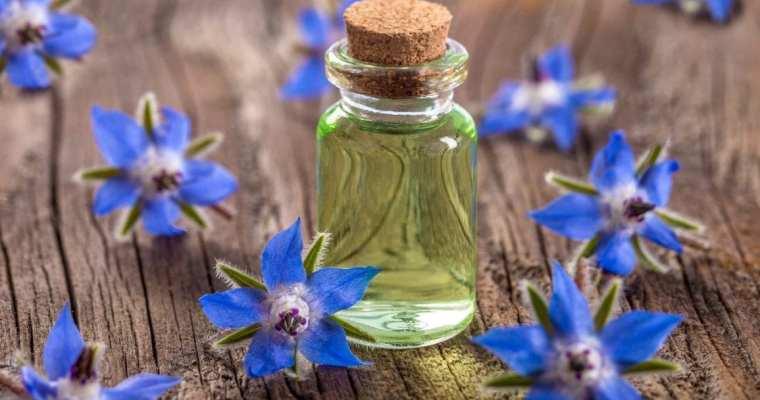 5 benefits of borage oil