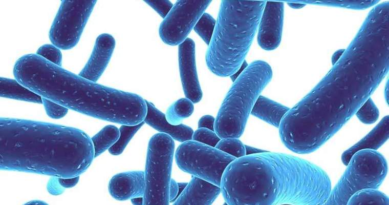 How to Take Probiotics: The Top Tips You Should Know