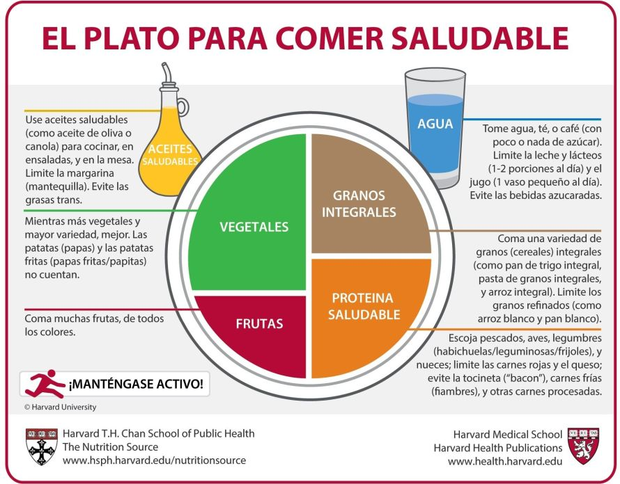 tu-plato-saludable-harvard