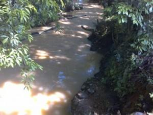 Río Cocayá