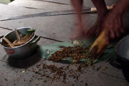 Seis pacientes con depresión recibieron una dosis de ayahuasca en Brasil y mostraron una mejoría de su estado.