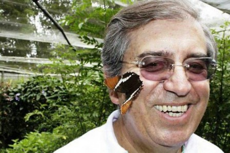 Experto quindiano asegura que una mariposa podría ser el reemplazo del glifosato(Foto: Archivo/VANGUARDIA LIBERAL)