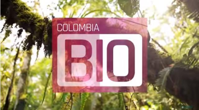 Expedición Colombia Bio en Putumayo, estrategia para prevenir tráfico de flora y fauna silvestre