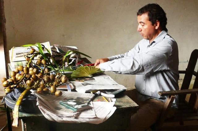 decalogo-plantas-colombia