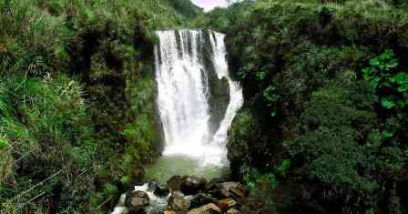 El Parque Nacional Natural de Puracé está entre los departamentos de Cauca y Huila. En este parque nacen los principales ríos de Colombia: Magdalena, Cauca, Patía y Chaqueta, además de 30 lagunas. (Foto: Cortesía DTAO.)