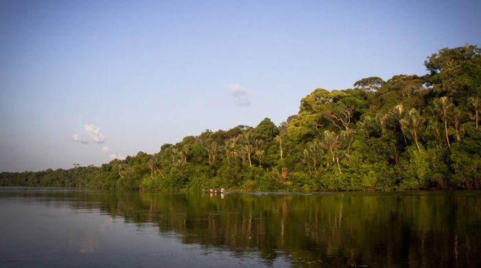 """Autoridades ambientales le apuestan a extraer petróleo en el Amazonas de forma """"responsable"""""""