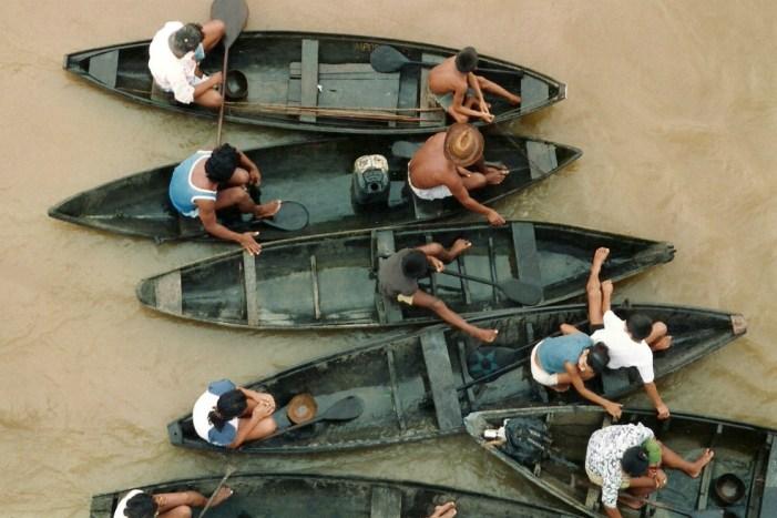 Los indígenas cuidan mejor la Amazonía que los gobiernos, según estudio