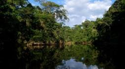 Avanza uno de los corredores que protegerá la Amazonia