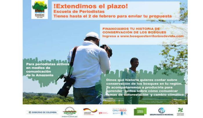 Se amplia convocatoria para periodistas de la Amazonía que quieran contar historias de la selva y el bosque