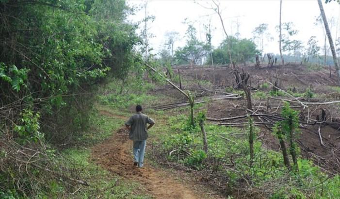 URT aseguró que reparación de víctimas de las Farc debe darse con devolución de tierras