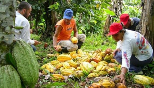 Se invierte 1 billón de pesos en las áreas protegidas de la Amazonía