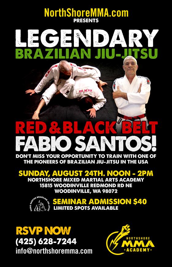 brazilian jiu jitsu poster on behance