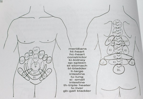 masunaga's hara diagnosis map