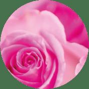 cercle-opale-rose