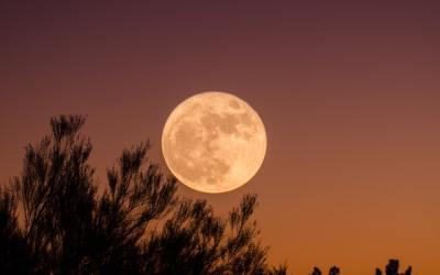 Pleine Lune : 2 rituels de Voeux en extérieur