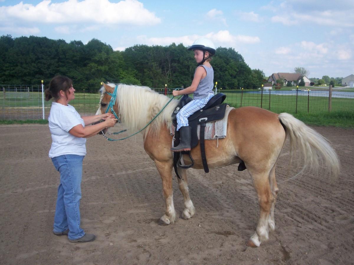 Professional Horseback Riding Lessons