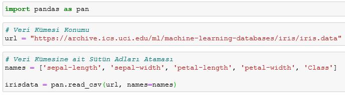 microsoft power bi python neural networks model adeline type add pandas column rename data new type