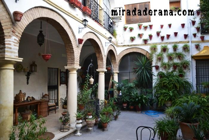 Patio cordobés Córdoba