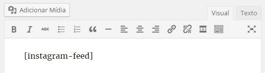 Código na Página do Feed do Instagram no WordPress