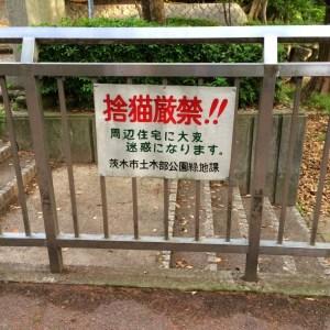 2014_ 5_ 6_23_11