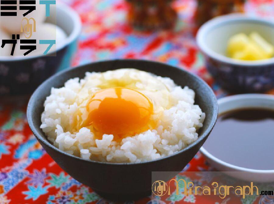 『生たまご』 VS『加熱たまご』料理どちらがいい!?10月30日は『たまごかけごはん(TKG)』の日『今日というミライグラフ365』