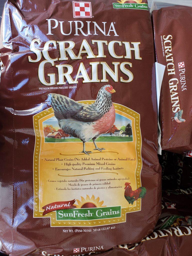 Purina Scratch Grains Fifty Pound Bag Poultry Scratch Grains for Sale