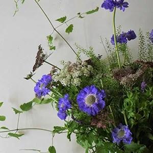 Miranda-Hackett-flowers_18