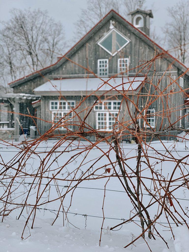 Romantic Weekend Getaway in Traverse City, Michigan | Wine Tasting in Traverse City Michigan | Miranda Schroeder Blog  www.mirandaschroeder.com