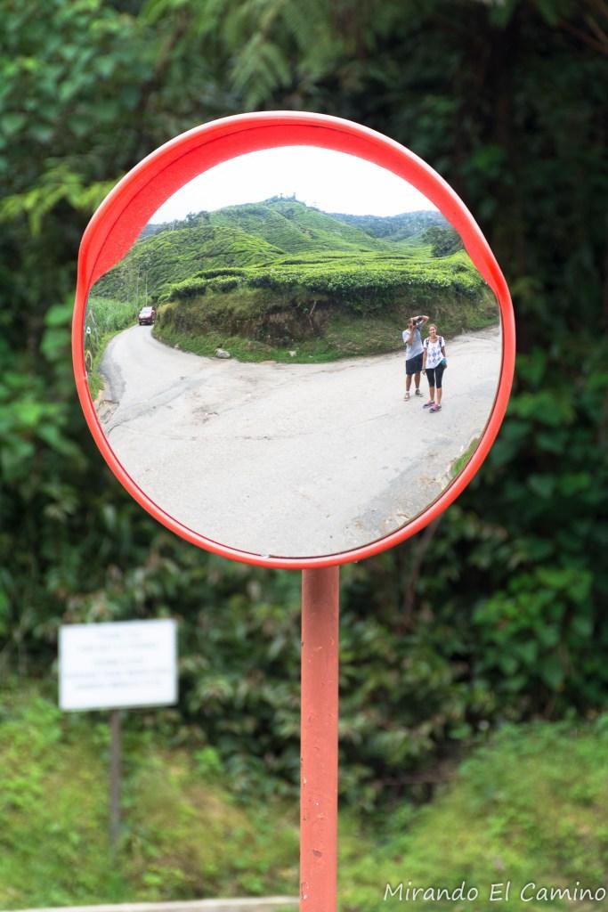 Mirando el camino