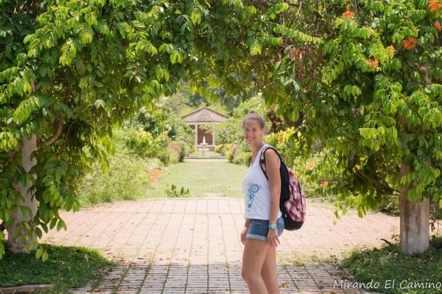 Jardin Botanico Penang
