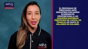MIRA USA Informa! Ayudas de la Agencia Federal de Pequeños Negocios de Estados Unidos (SBA) #Covid19