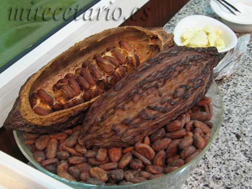 Chocotour, Chocolate y Cultura en Zaragoza