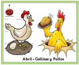Recetario Mañoso de Abril, pollos y gallinas