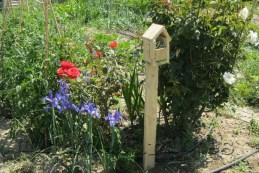 Casa de mariquitas en el jardín del huerto
