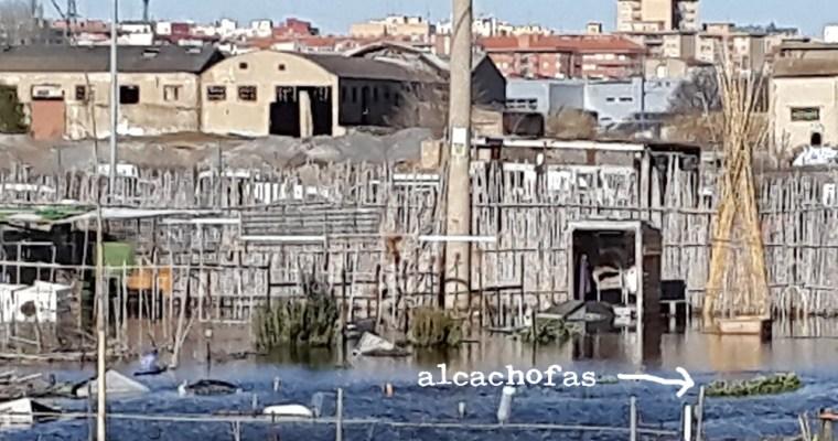 El Ebro inunda mi huerto