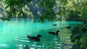 plitvice-lakes-national