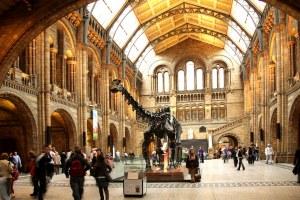 London-Natural-History-Museum