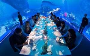 sumblination-restaurant-ibiza-1