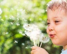 ¿Por qué aparece y desaparece la alergia?