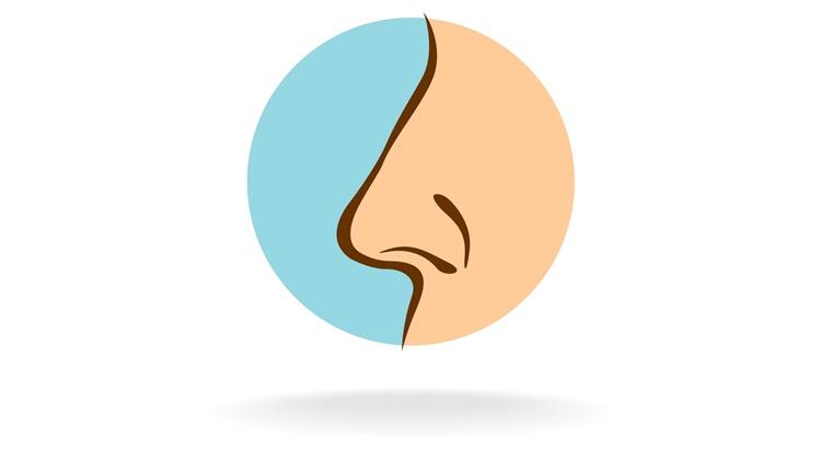 Как изменить форму носа в домашних условиях с помощью магии