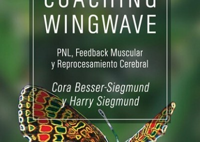 Coaching Wingwave: PNL feedback